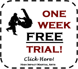martial arts New Jersey free trial classes judo kickboxing