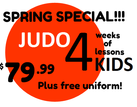 judo lessons kids special